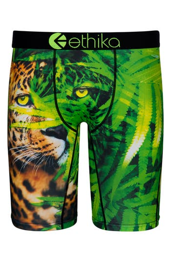 Boys Ethika Catnip Stretch Boxer Briefs Size L  1012  Green