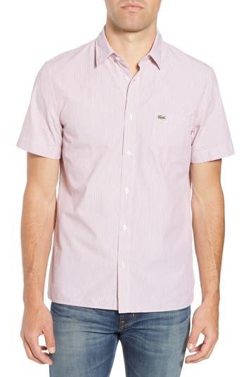 Men's Lacoste Regular Fit Seersucker Sport Shirt, Size 42 - Red