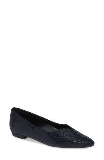 VANELi 'Ganet' Pointy Toe Flat