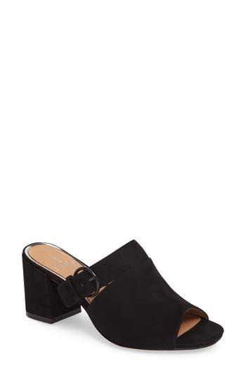 Women's Linea Paolo Isla Block Heel Mule, Size 6 M - Black