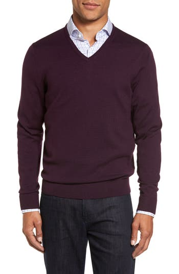 Big & Tall Nordstrom Shop V-Neck Merino Wool Sweater, Purple