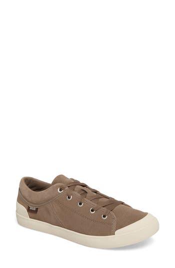 Teva Freewheel Sneaker- Brown