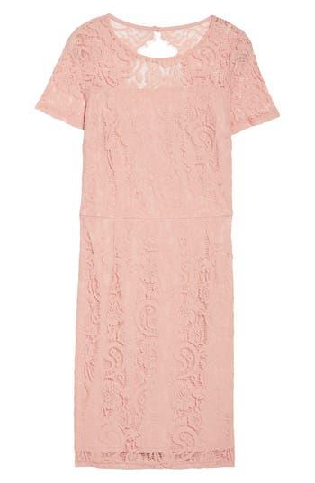 Plus Size Dorothy Perkins Lace Sheath Dress, W US / 20 UK - Pink