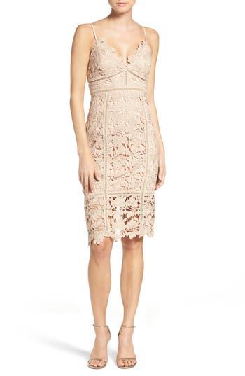 Bardot Botanica Lace Dress, Beige