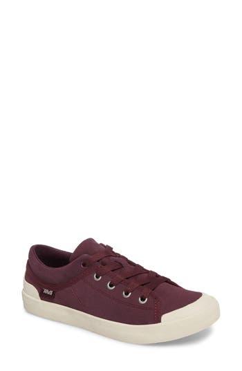 Teva Freewheel Sneaker- Purple