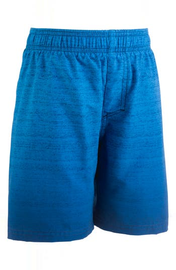 Boys Under Armour Dipper Heatgear Volley Shorts Size 4  Blue