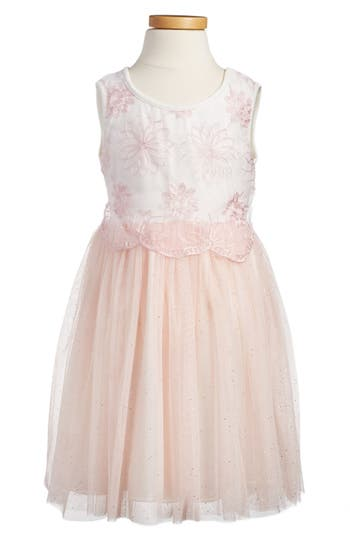 Girl's Popatu Embroidered Tulle Dress