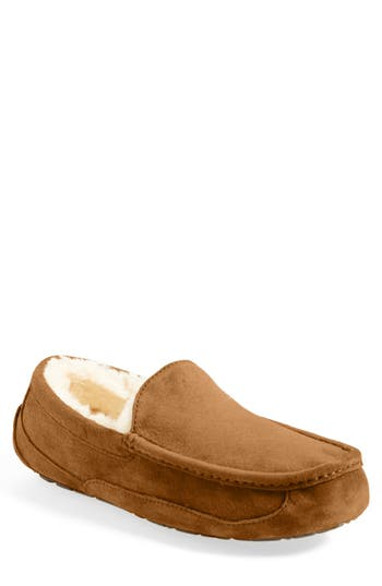 Ugg Ascot Suede Slipper, Brown