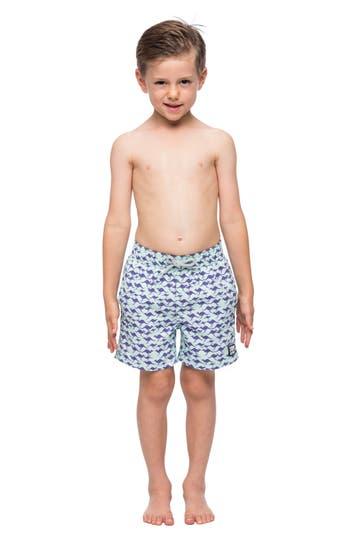Boys Tom  Teddy Kangaroo Swim Trunks