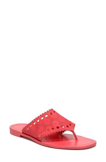 Diane Von Furstenberg Ekati Thong Sandal, Pink