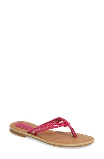 Sperry Anchor Coy Sandal- Pink