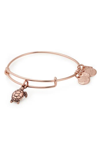 Alex and Ani Charity by Design Sea Turtles Adjustable Wire Bangle