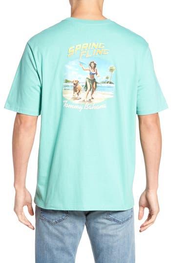 Big & Tall Tommy Bahama Spring Fling T-Shirt, Grey