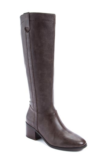 Latigo Diggity Knee-High Boot- Brown