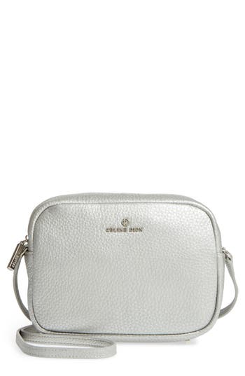 Celine Dion Adagio Leather Camera Crossbody Bag - Metallic