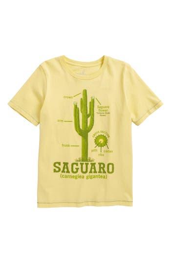 Boy's Peek Cactus Graphic T-Shirt, Size XL (12) - Yellow