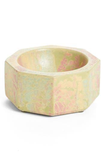 Concrete Cat Midi Octavia Bowl