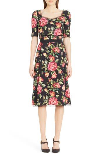 Dolce & gabbana Rose Print Cady A-Line Dress, Black