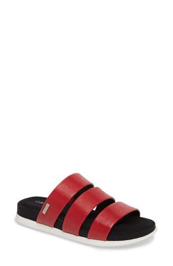 Calvin Klein Dalana Slide Sandal, Red