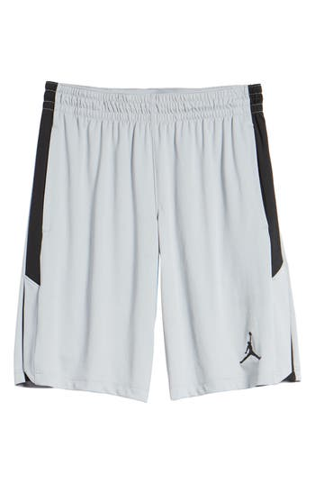 Nike Jordan 23 Alpha Dry Knit Shorts, Grey