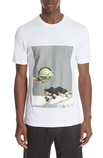 Men's 3.1 Phillip Lim Cabbage Print T-Shirt, Size Small - White