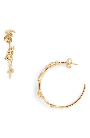 Meadowlark Large Alba Hoop Earrings