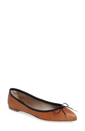Agl Sacchetto Pointy Toe Flat, Brown
