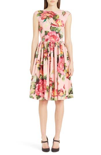 Dolce & gabbana Rose Print Cotton Poplin Dress, 8 IT - Pink