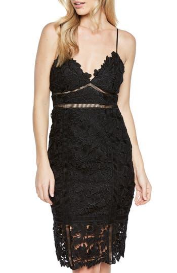 Bardot Botanica Lace Dress, Black