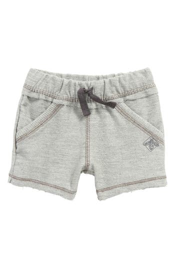 Infant Boys Burts Bees Baby Organic Cotton French Terry Shorts