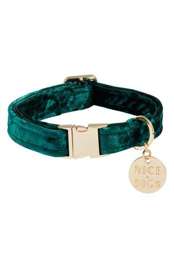 Nice Digs Velvet Dog Collar, Size X-Small - Blue/green