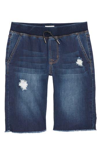 Boys Hudson Kids Knit Cutoff Denim Shorts