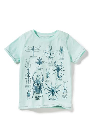 Boys Peek Bug Types Graphic TShirt
