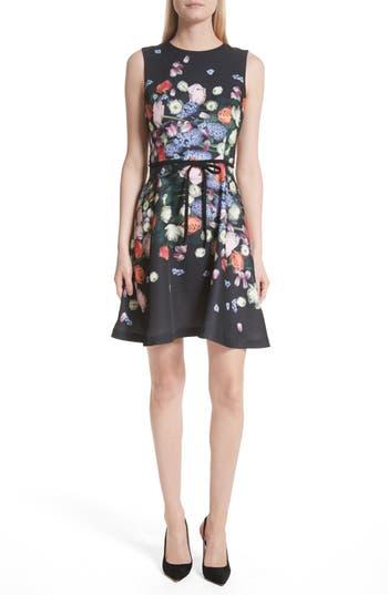 Ted Baker London Izobela Kensington Floral A-Line Dress, Black