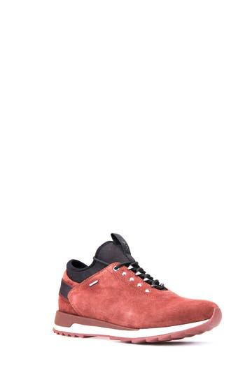 Geox Aneko Abx Waterproof Sneaker, Brown