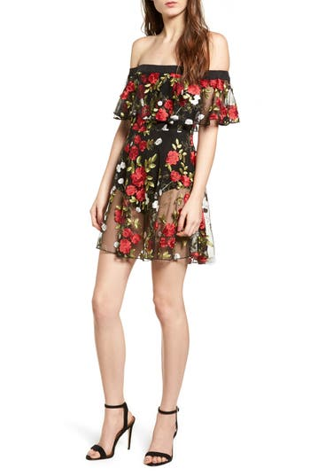 Lovers + Friends Erica Sheer Embroidered A-Line Dress, Red