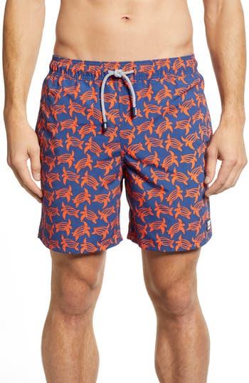 Tom & Teddy Turtle Print Swim Trunks