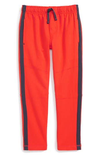 Boy's Tea Collection Side Stripe Knit Pants