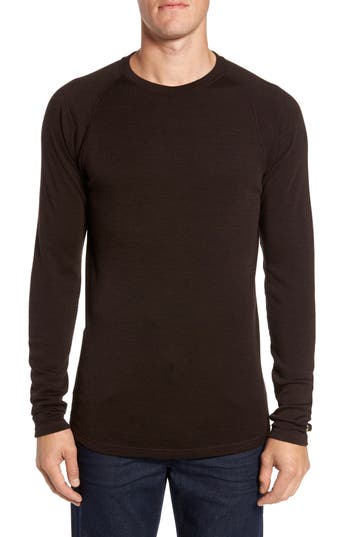 Smartwool Merino 250 Base Layer Crewneck T-Shirt, Brown