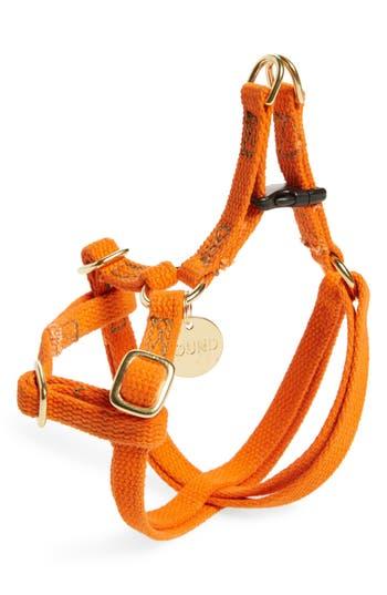 Found My Animal Adjustable Pet Harness, Size Small - Orange