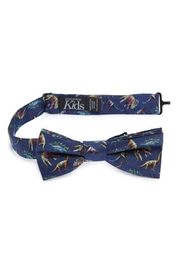 Boys Nordstrom Dinosaur Silk Bow Tie Size Big Boy  Blue