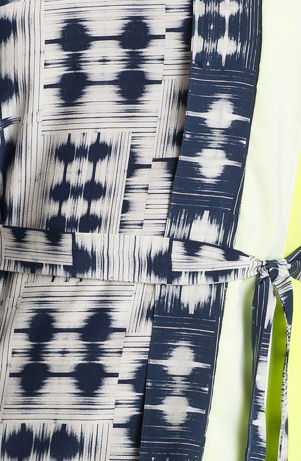 Alternate Image 3  - BCBGMAXAZRIA Sleeveless Print Silk Dress