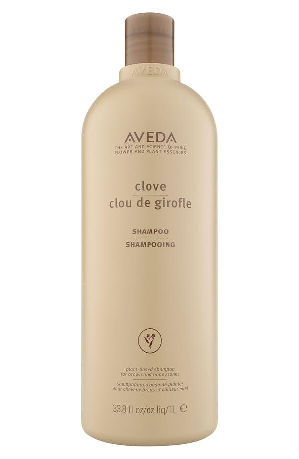 Main Image - Aveda Clove Shampoo