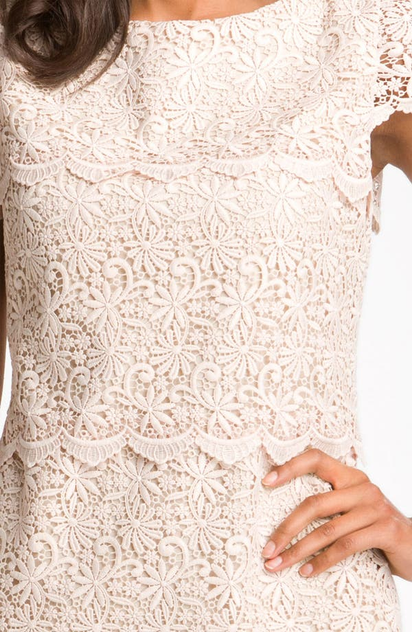 Alternate Image 3  - Eliza J Tiered Lace Overlay Shift Dress