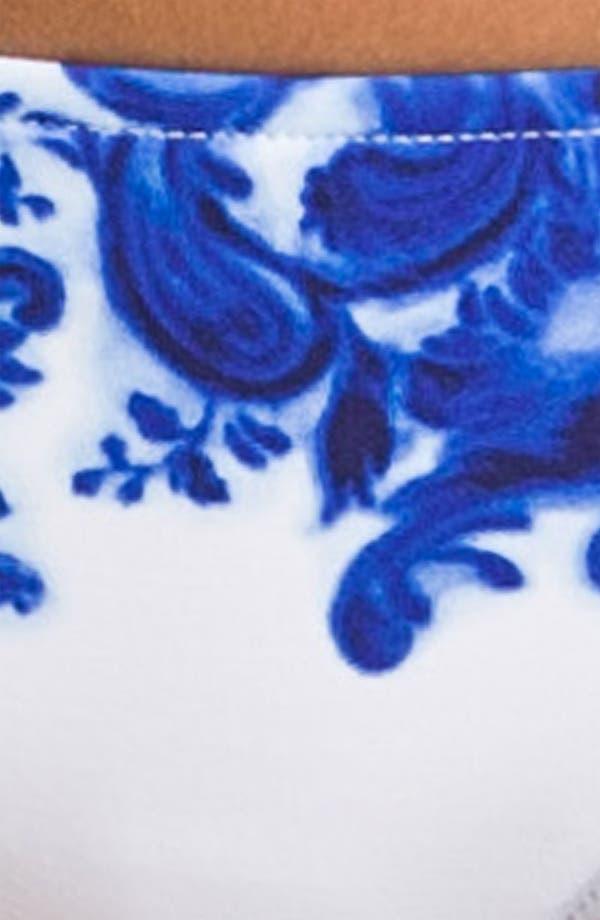 Alternate Image 3  - Ralph Lauren Blue Label Print Hipster Bikini Bottoms