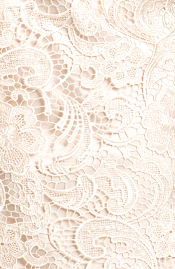 Alternate Image 3  - Adrianna Papell Lace One Shoulder Sheath Dress