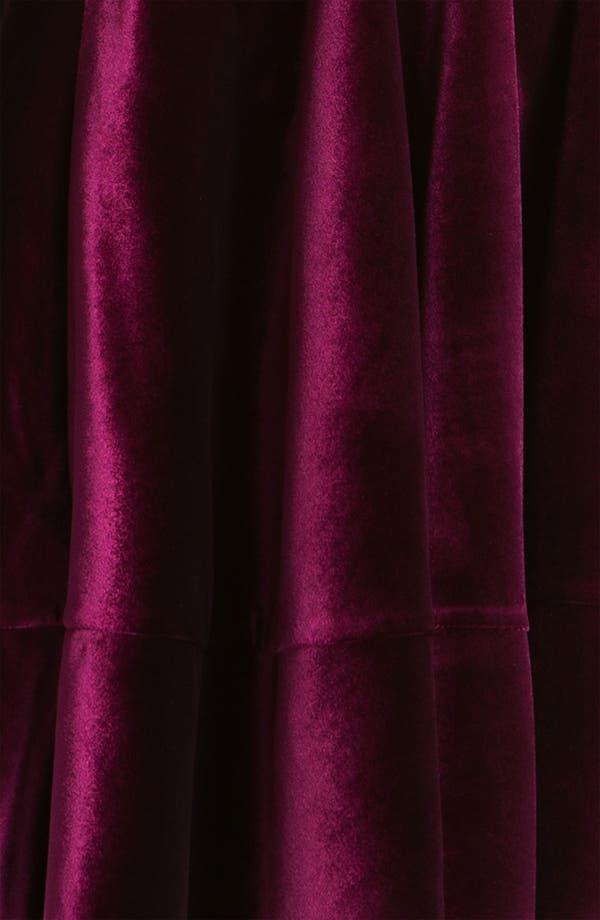 Alternate Image 3  - Adrianna Papell Scoop Neck Velvet Dress (Petite)