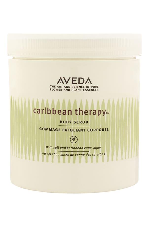 Alternate Image 1 Selected - Aveda 'caribbean therapy™' Body Scrub