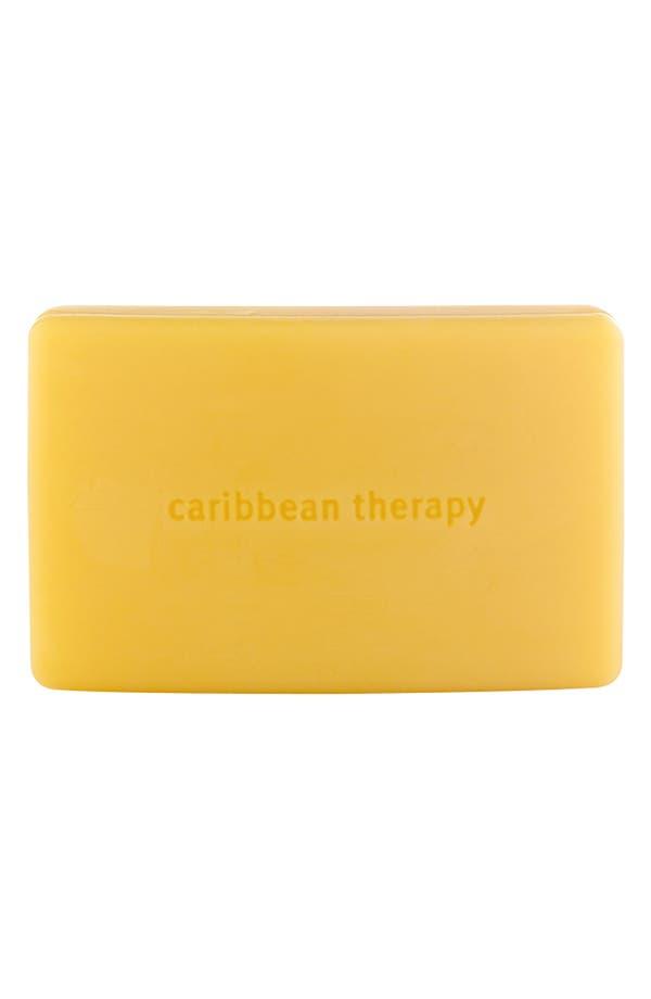 Alternate Image 1 Selected - Aveda 'caribbean therapy™' Body Bath Bar
