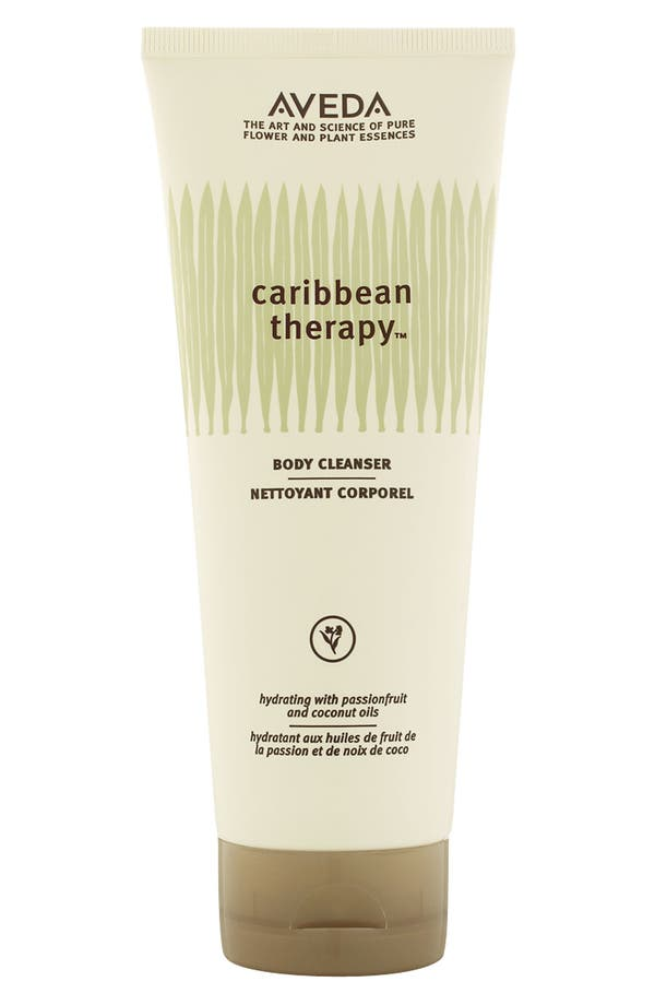 Alternate Image 1 Selected - Aveda 'caribbean therapy™' Body Cleanser